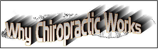 Why Chiropractic Care Works
