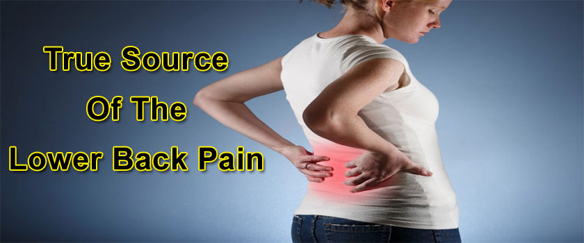 True Source Of The Lower Back Pain
